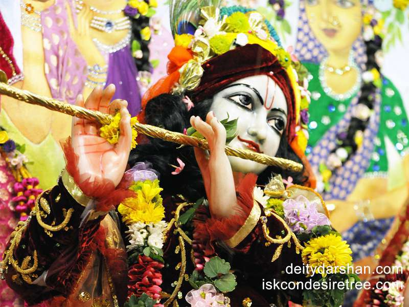 Sri Gopinath Close up Wallpaper  (044)