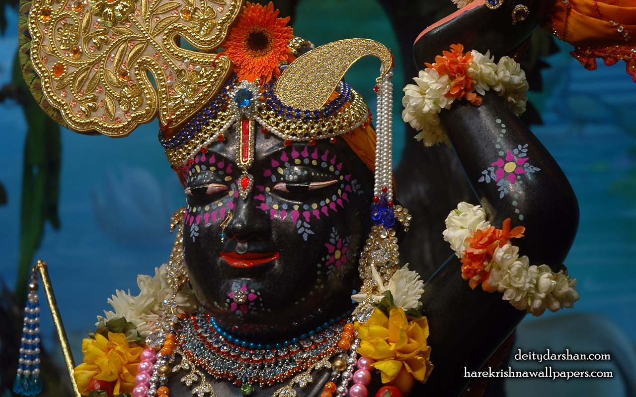 Sri Gopal Close up Wallpaper (045) Size 1280x800 Download