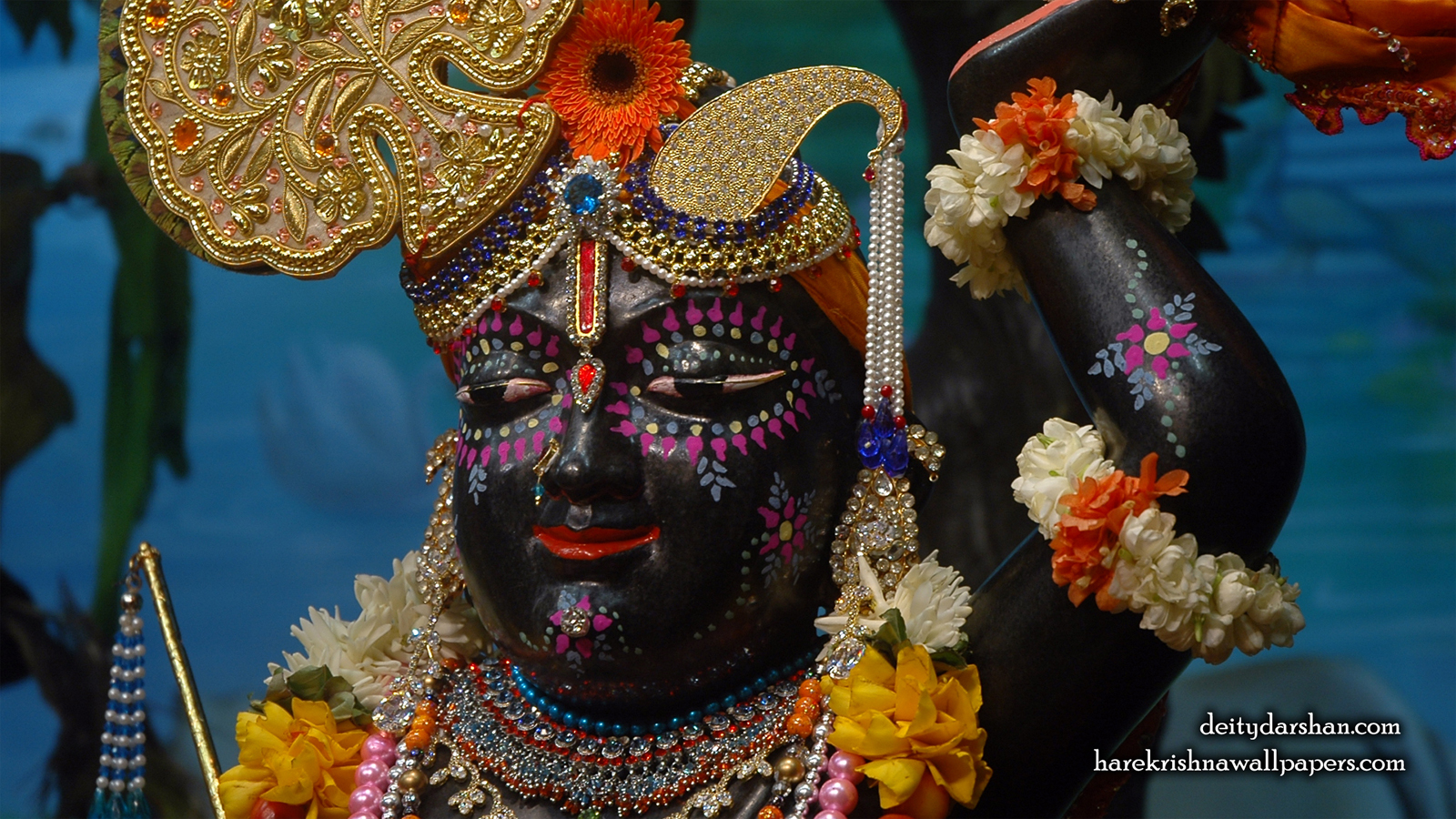 Sri Gopal Close up Wallpaper (045) Size 1600x900 Download