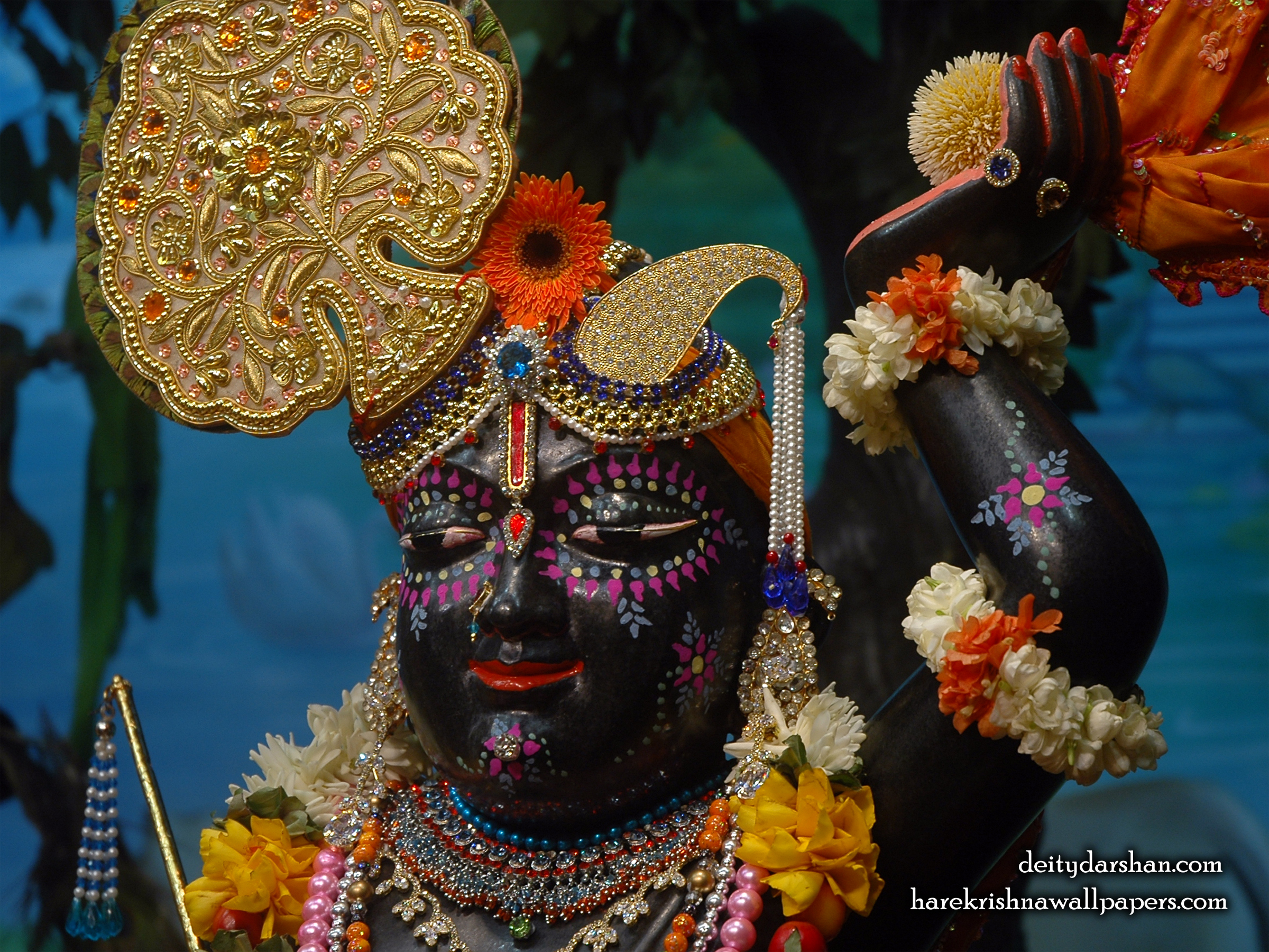 Sri Gopal Close up Wallpaper (045) Size 2400x1800 Download
