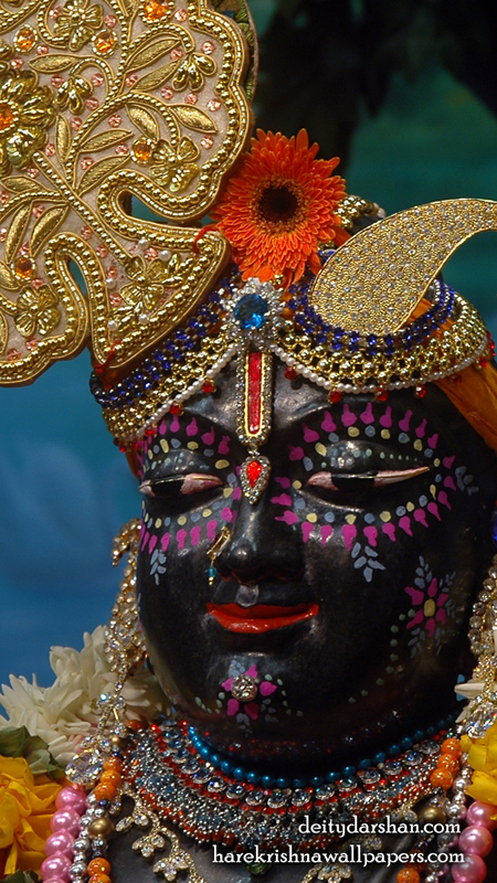 Sri Gopal Close up Wallpaper (045) Size 450x800 Download