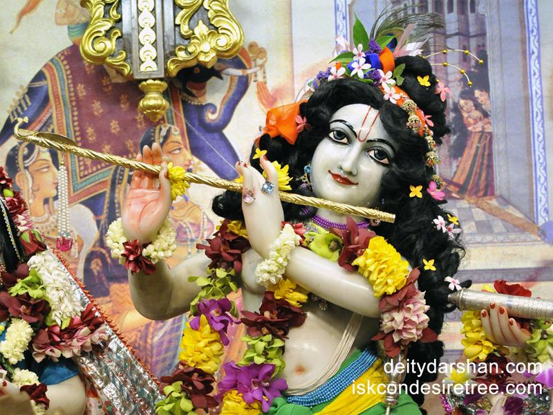 Sri Gopinath Close up Wallpaper (045) Size 800x600 Download