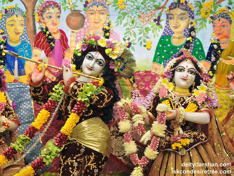 Sri Sri Radha Gopinath Close up Wallpaper (045)