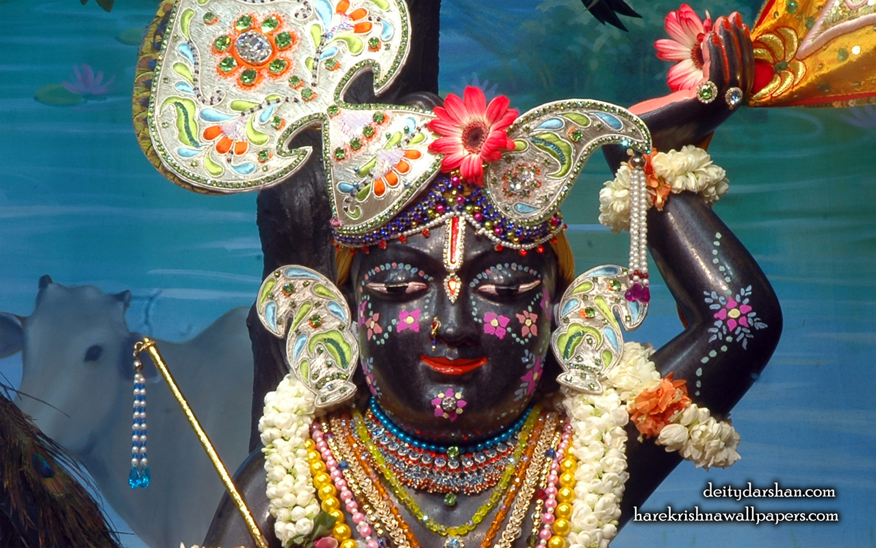 Sri Gopal Close up Wallpaper (046) Size 1280x800 Download