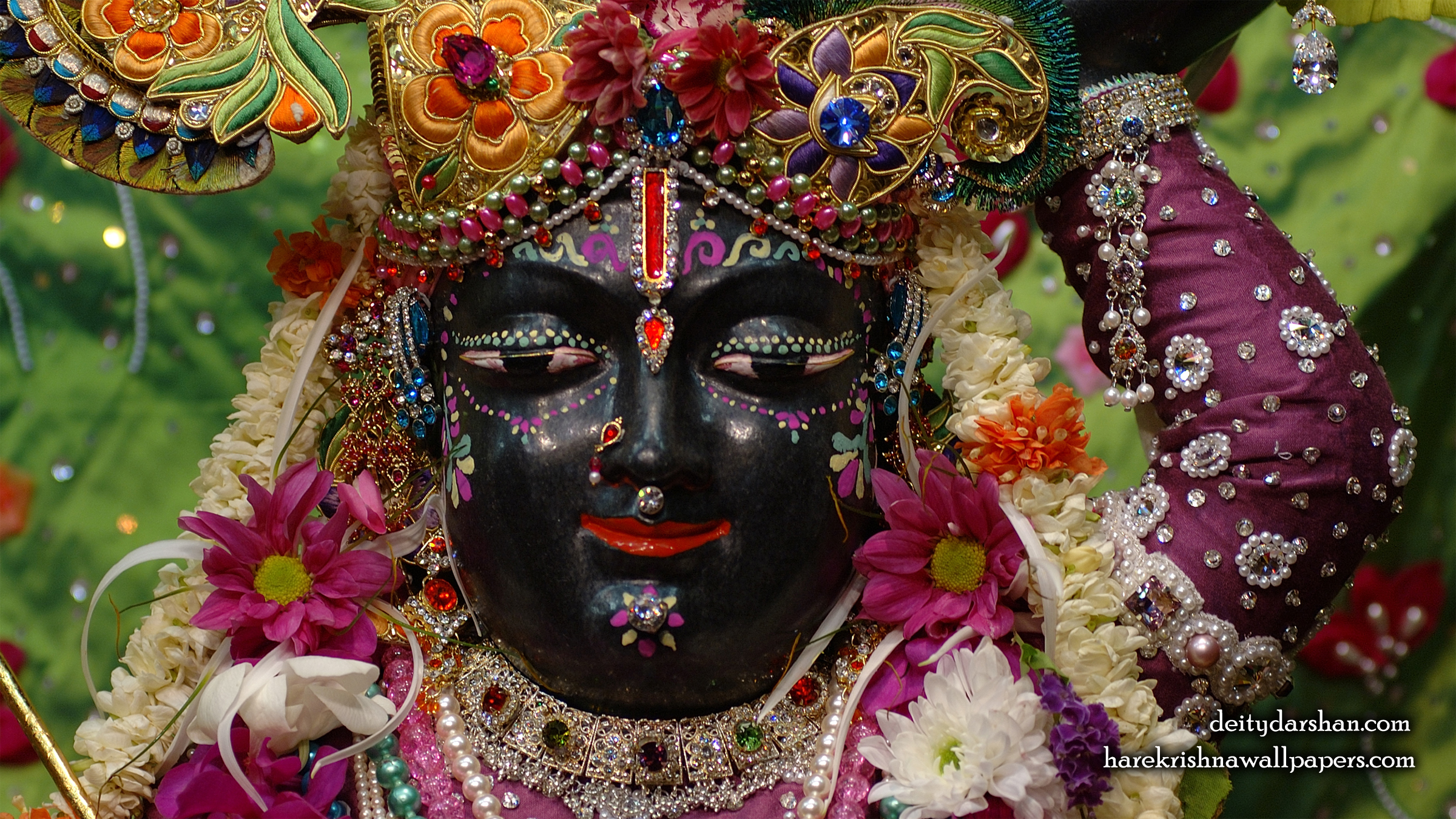 Sri Gopal Close up Wallpaper (047) Size 2400x1350 Download