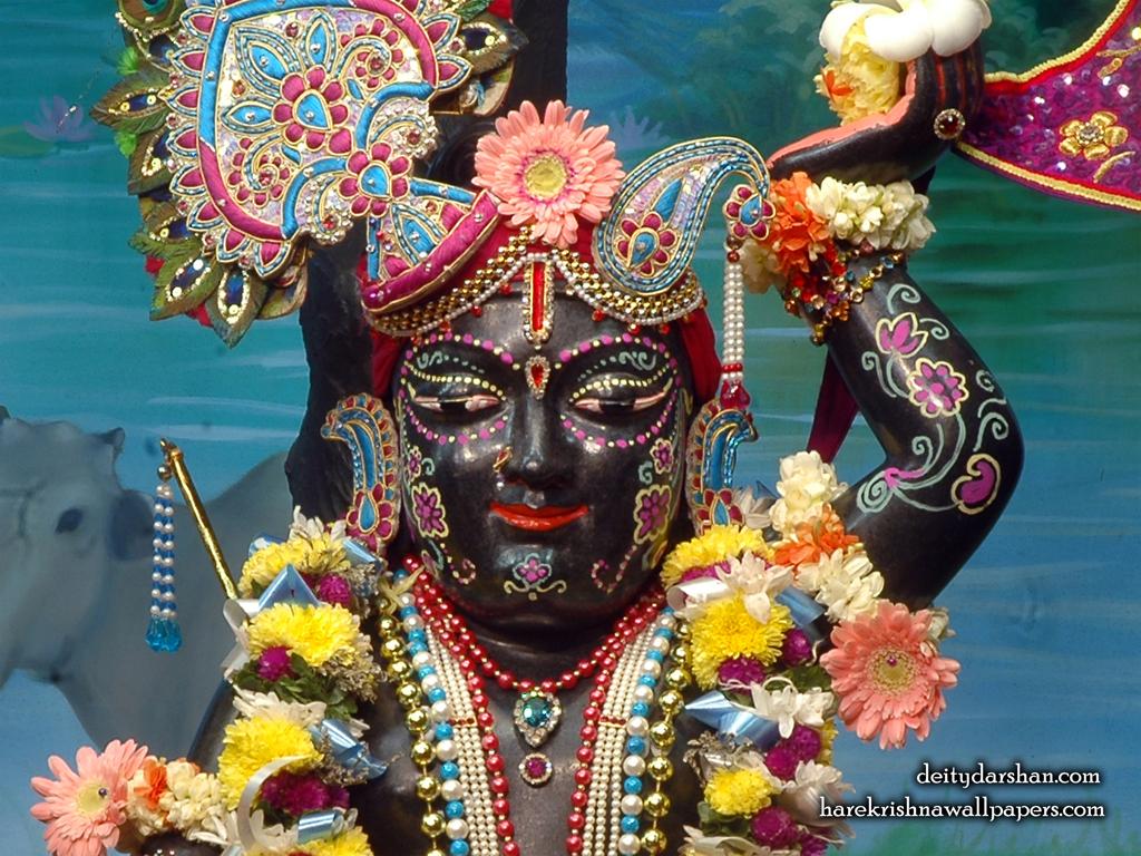 Sri Gopal Close up Wallpaper (048) Size 1024x768 Download