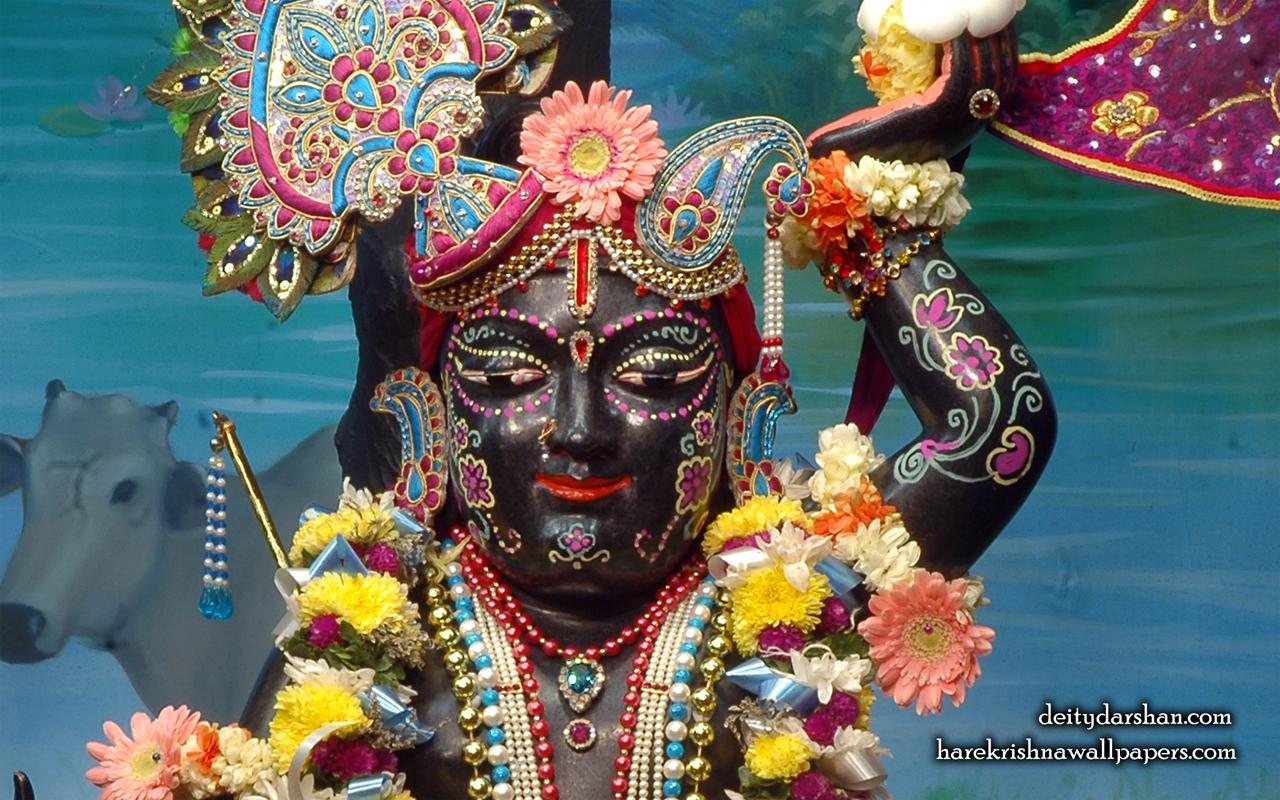 Sri Gopal Close up Wallpaper (048) Size 1280x800 Download