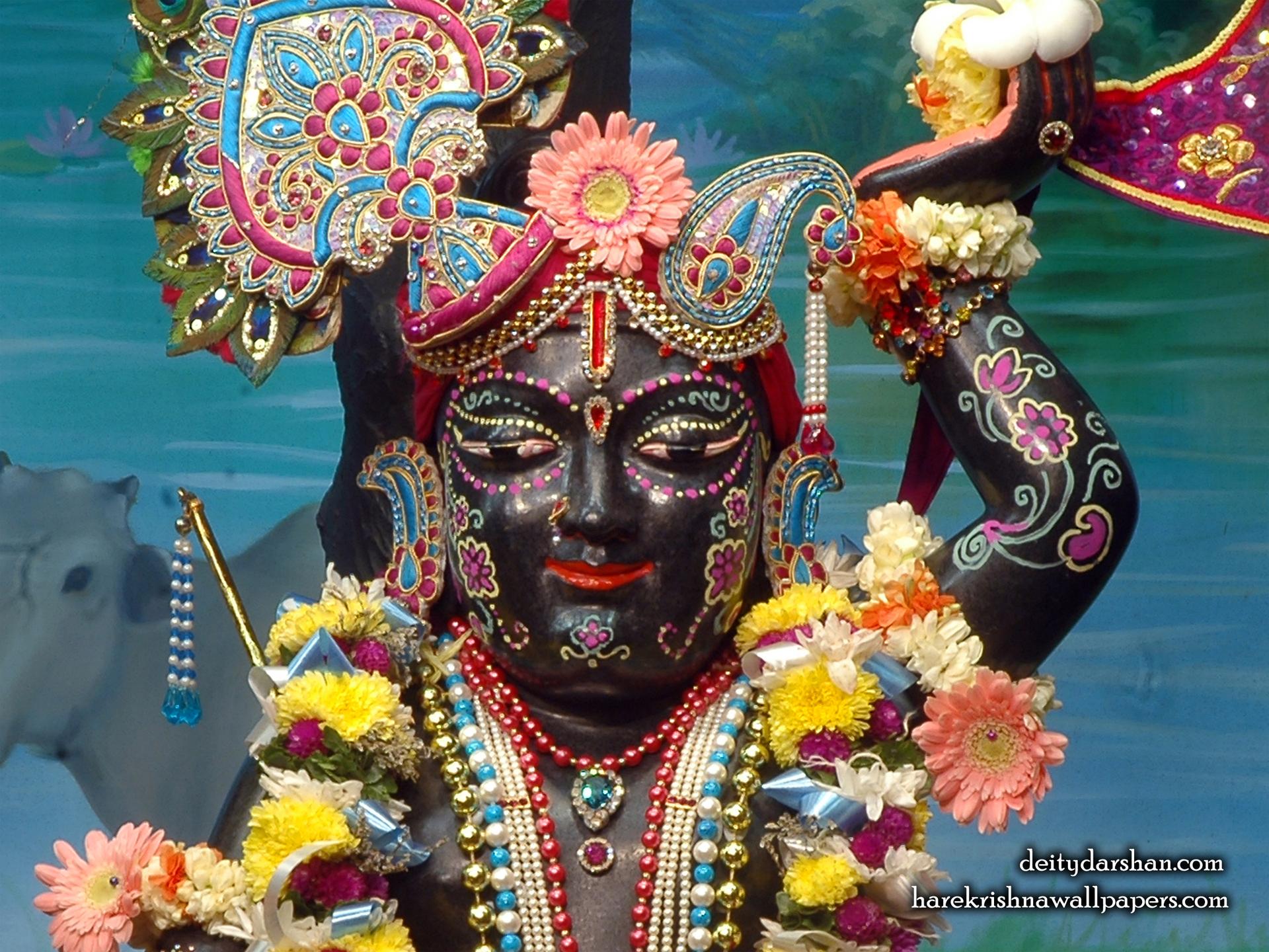 Sri Gopal Close up Wallpaper (048) Size 1920x1440 Download