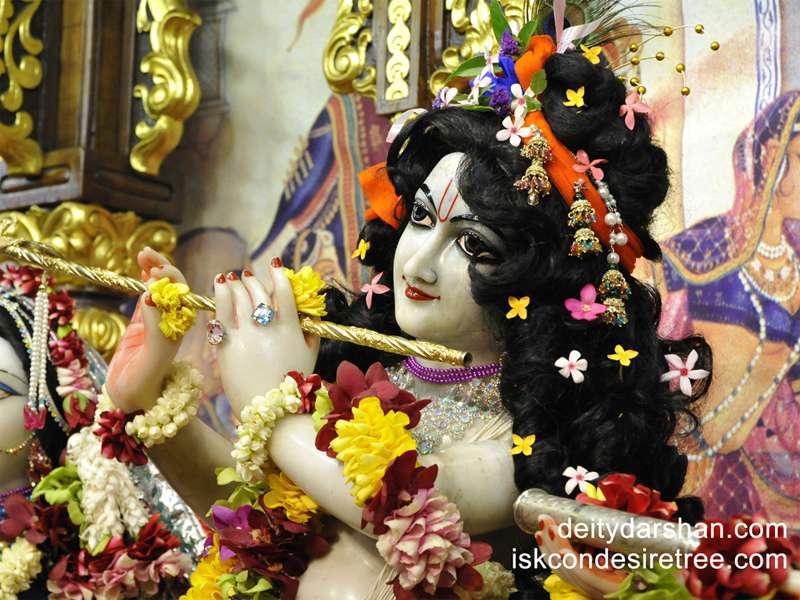 Sri Gopinath Close up Wallpaper  (049)