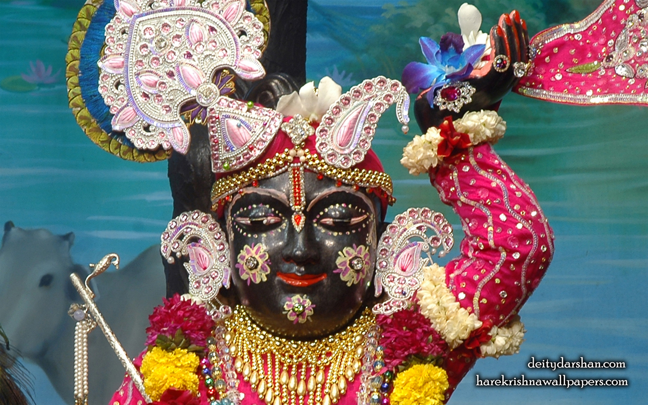 Sri Gopal Close up Wallpaper (050) Size 1280x800 Download