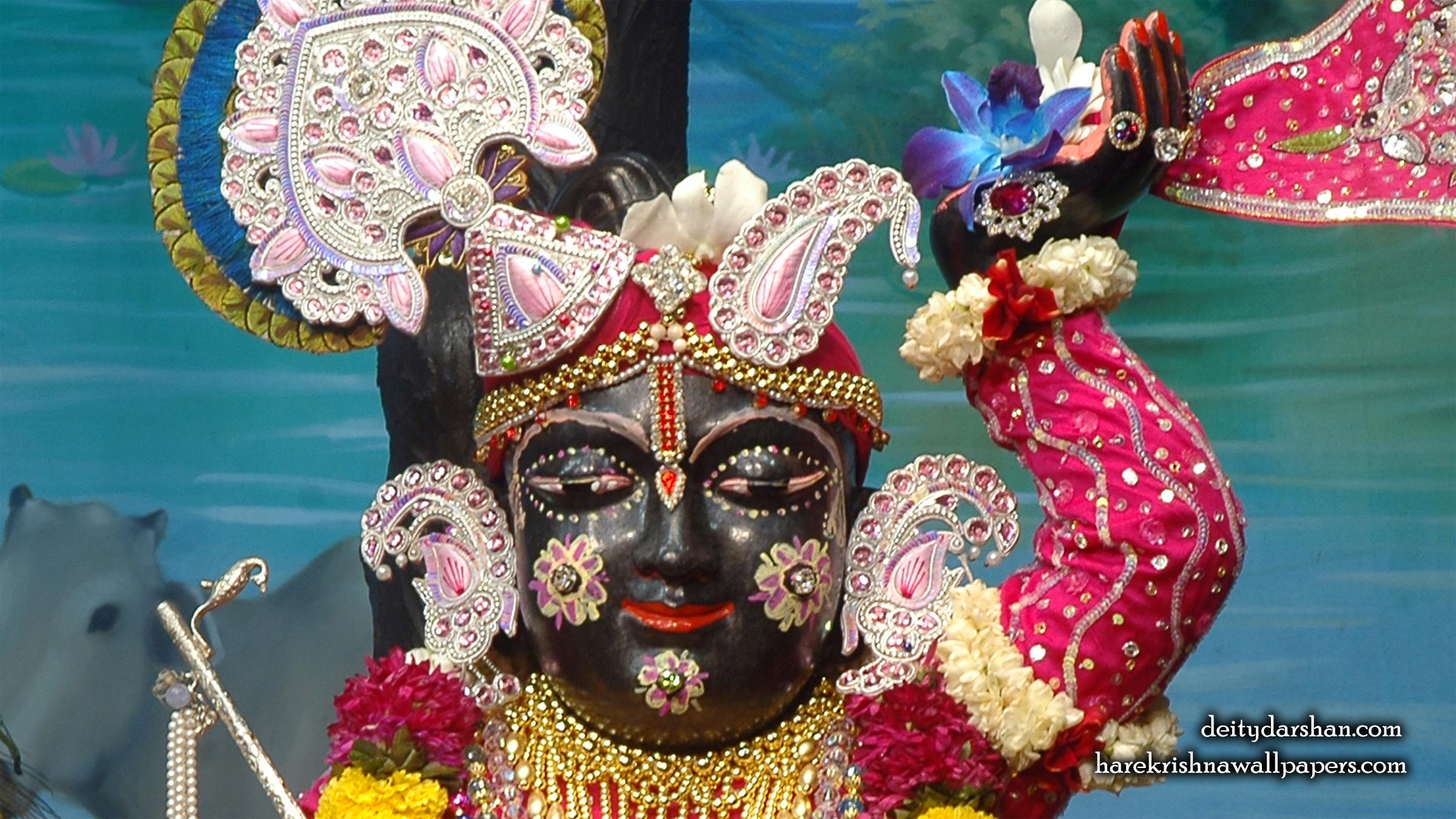 Sri Gopal Close up Wallpaper (050) Size 2400x1350 Download