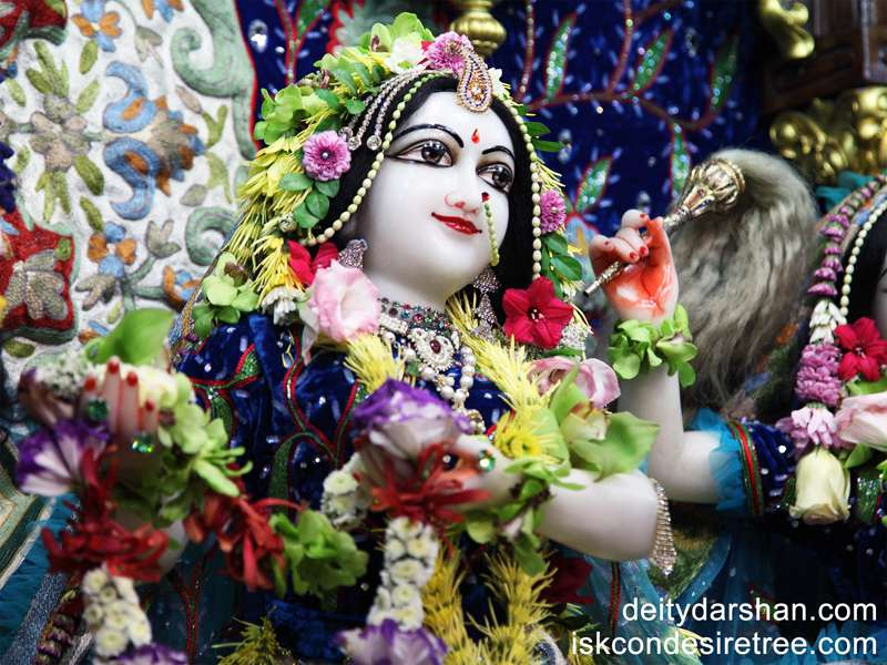 Srimati Radharani Close up Wallpaper (050)