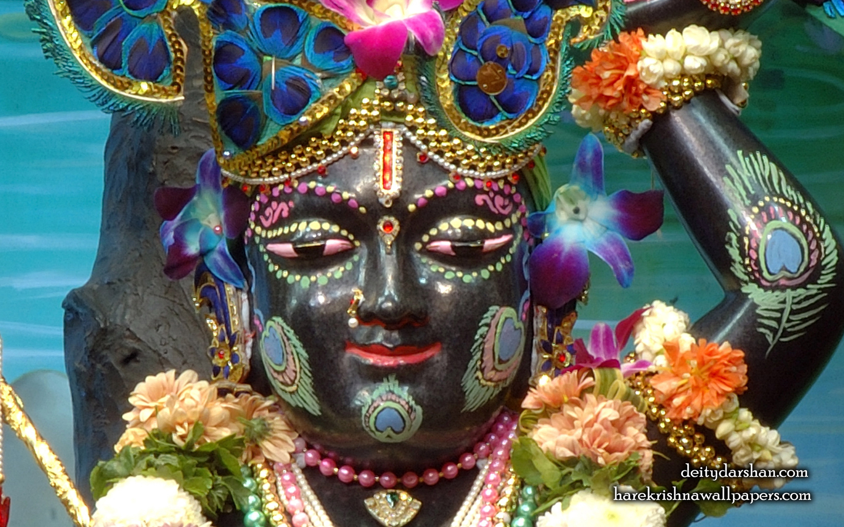 Sri Gopal Close up Wallpaper (051) Size 1680x1050 Download