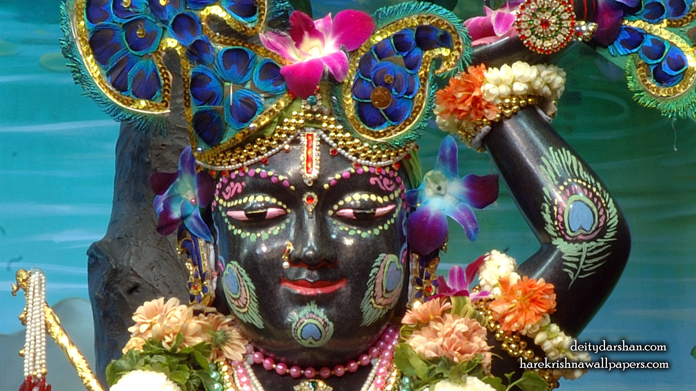 Sri Gopal Close up Wallpaper (051) Size 2400x1350 Download