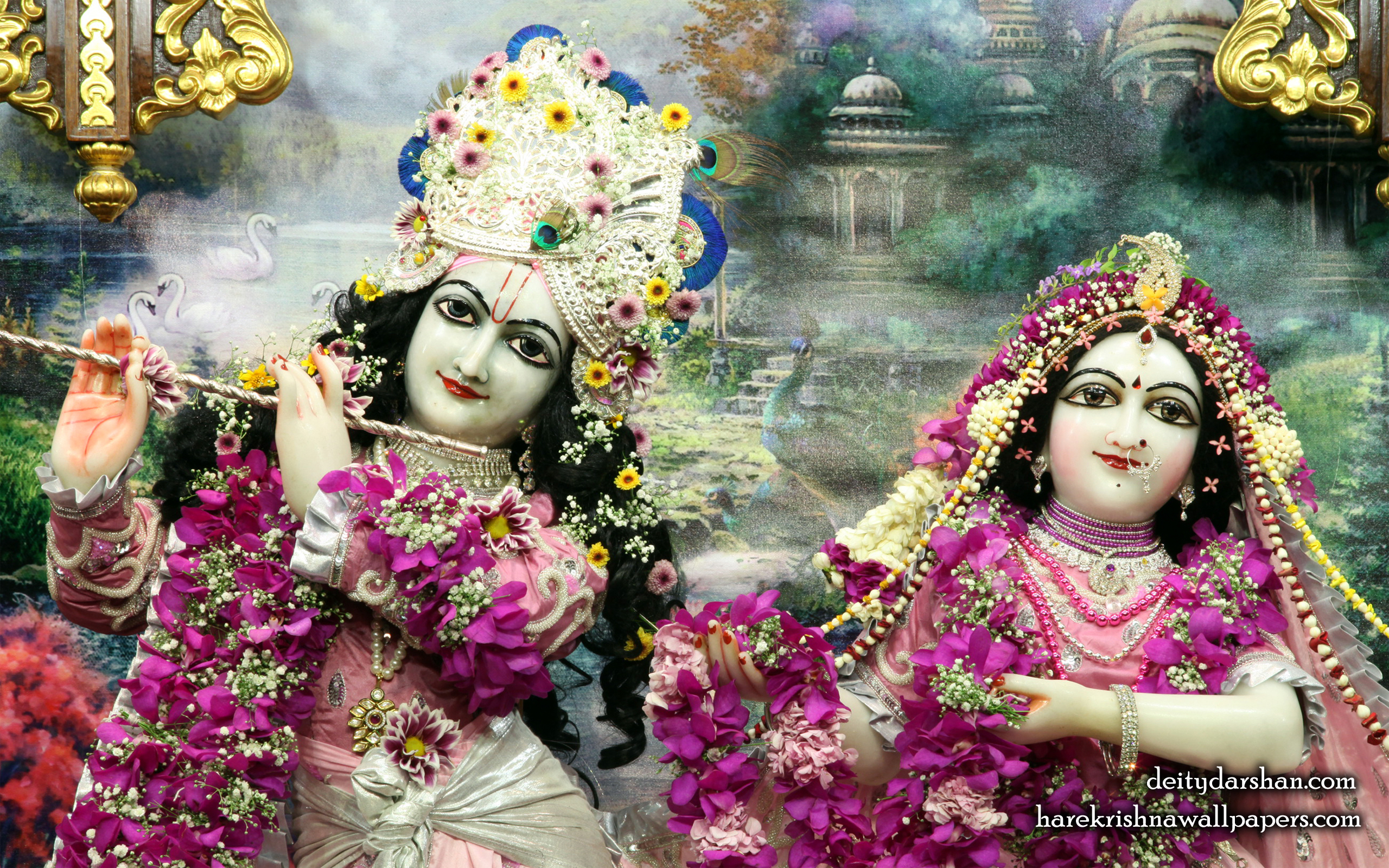 Sri Sri Radha Gopinath Close up Wallpaper (051) Size 2560x1600 Download