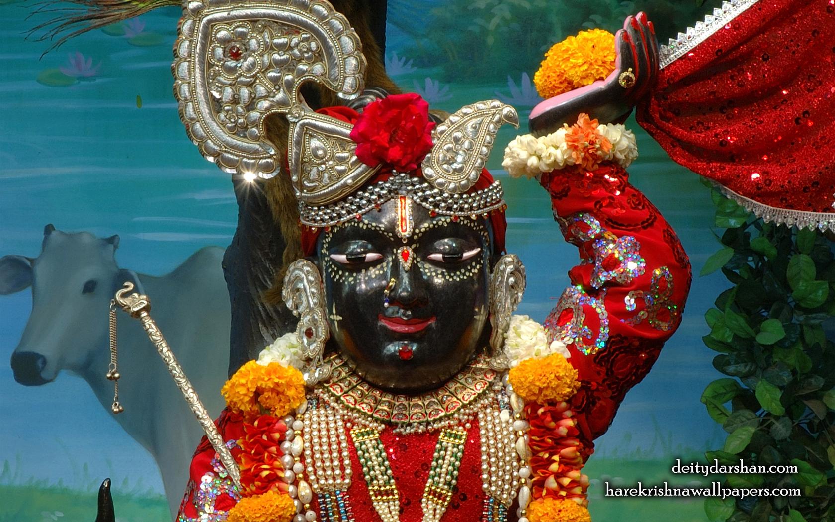 Sri Gopal Close up Wallpaper (053) Size 1680x1050 Download