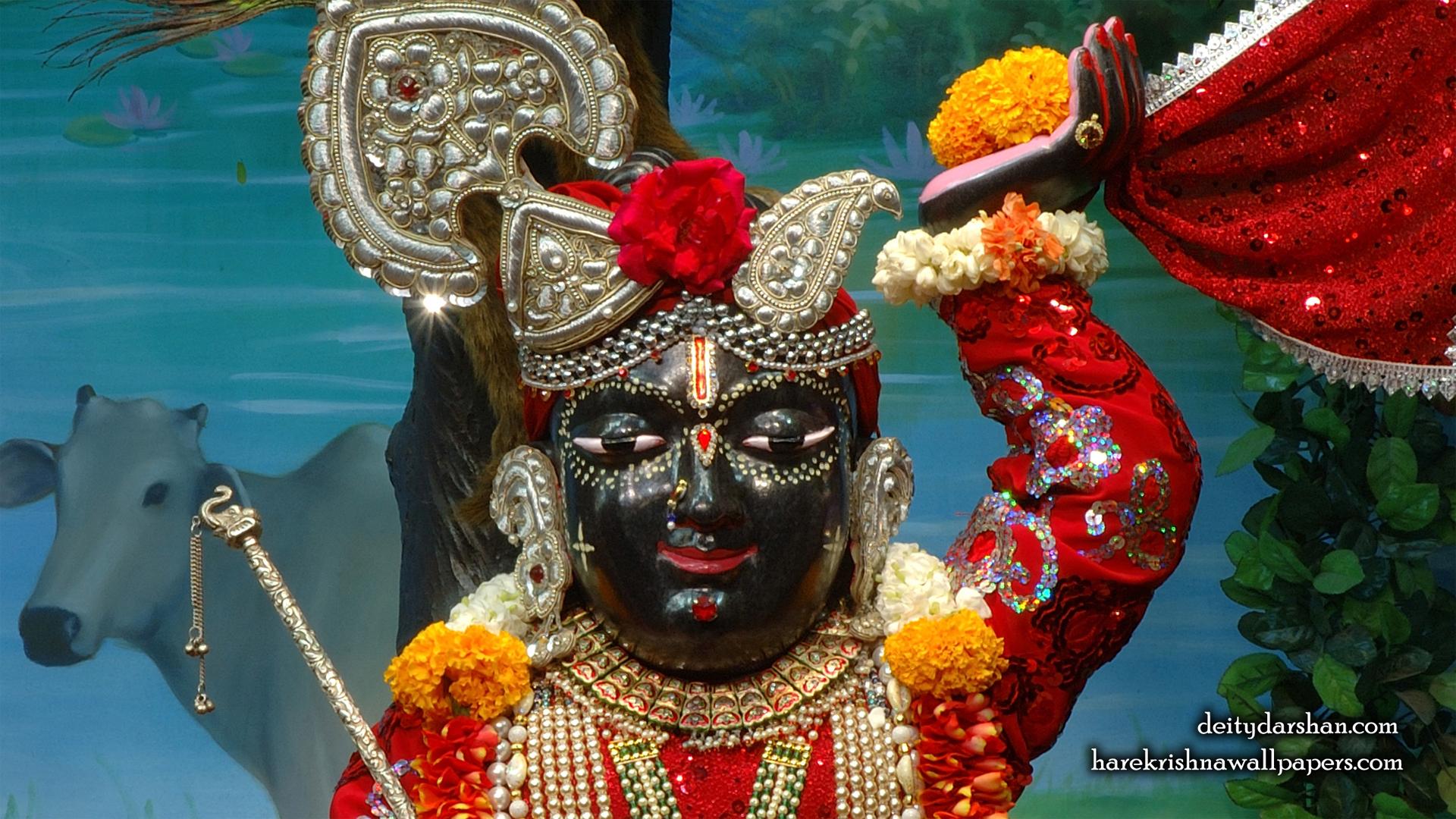 Sri Gopal Close up Wallpaper (053) Size 1920x1080 Download