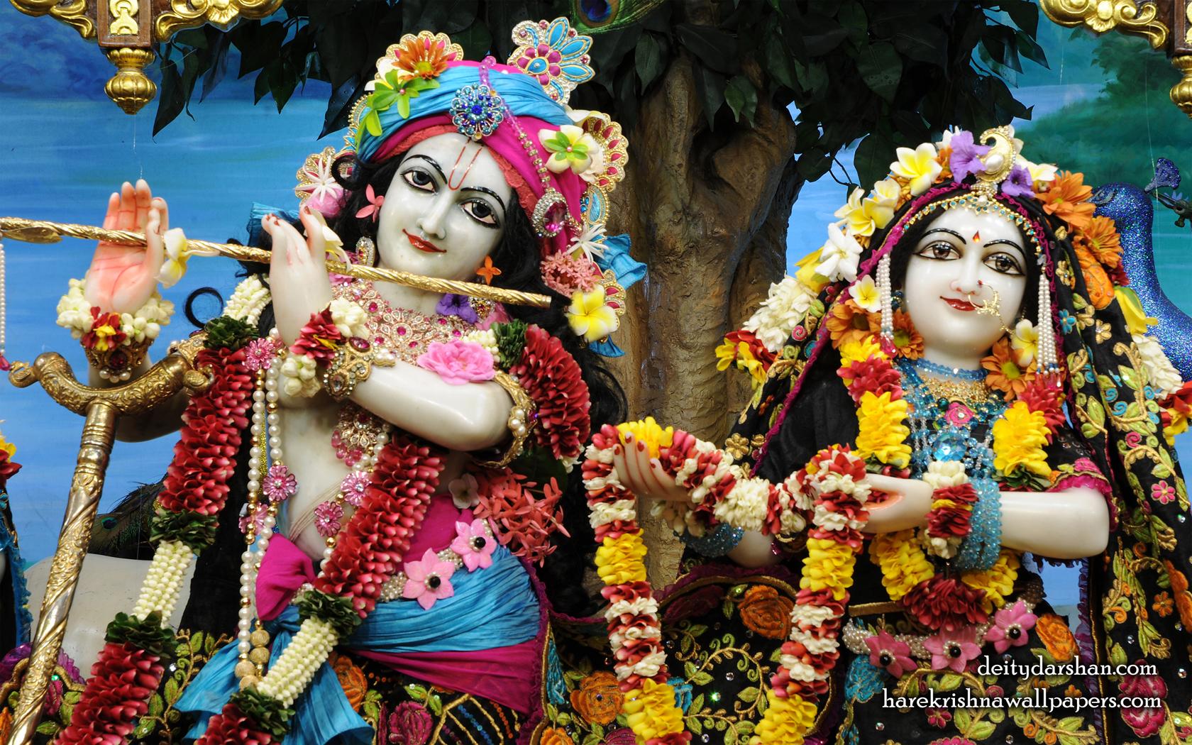 Sri Sri Radha Gopinath Close up Wallpaper (053) Size 1680x1050 Download