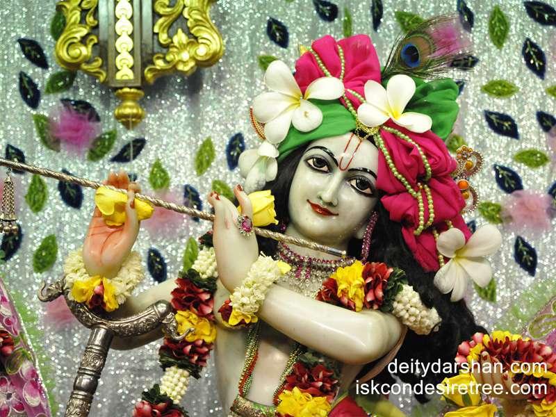 Sri Gopinath Close up Wallpaper  (054)