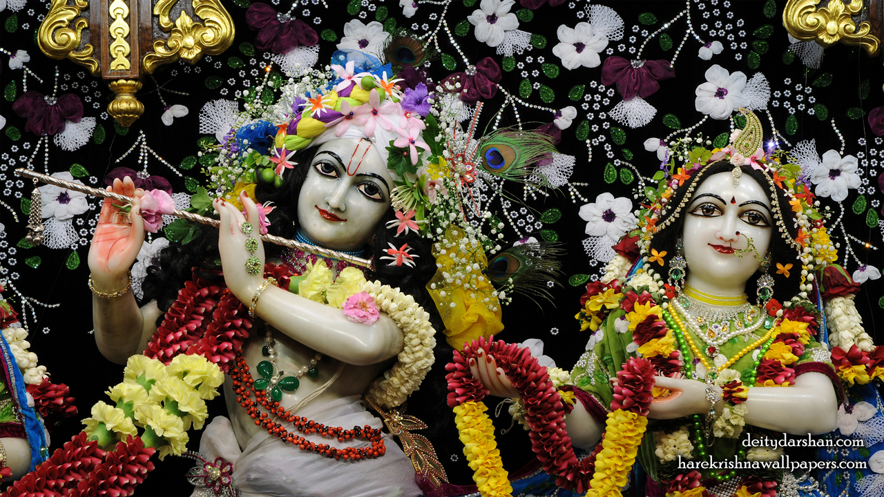 Sri Sri Radha Gopinath Close up Wallpaper (054) Size1280x720 Download