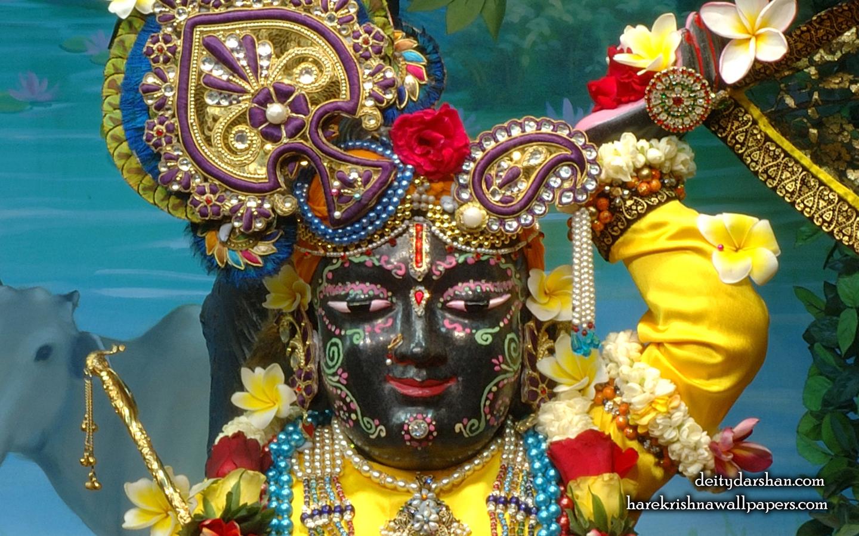 Sri Gopal Close up Wallpaper (055) Size 1440x900 Download