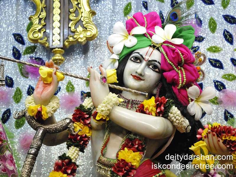 Sri Gopinath Close up Wallpaper  (055)