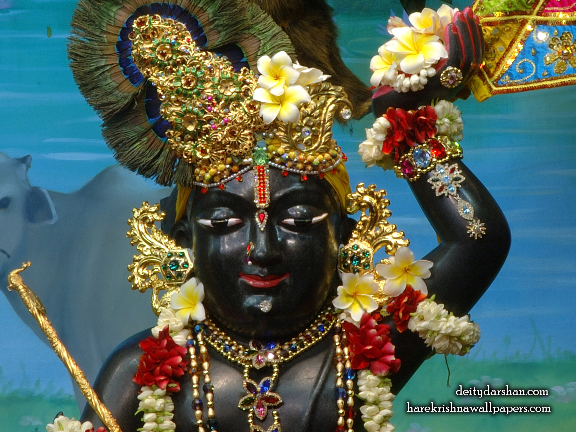 Sri Gopal Close up Wallpaper (056) Size 1920x1440 Download