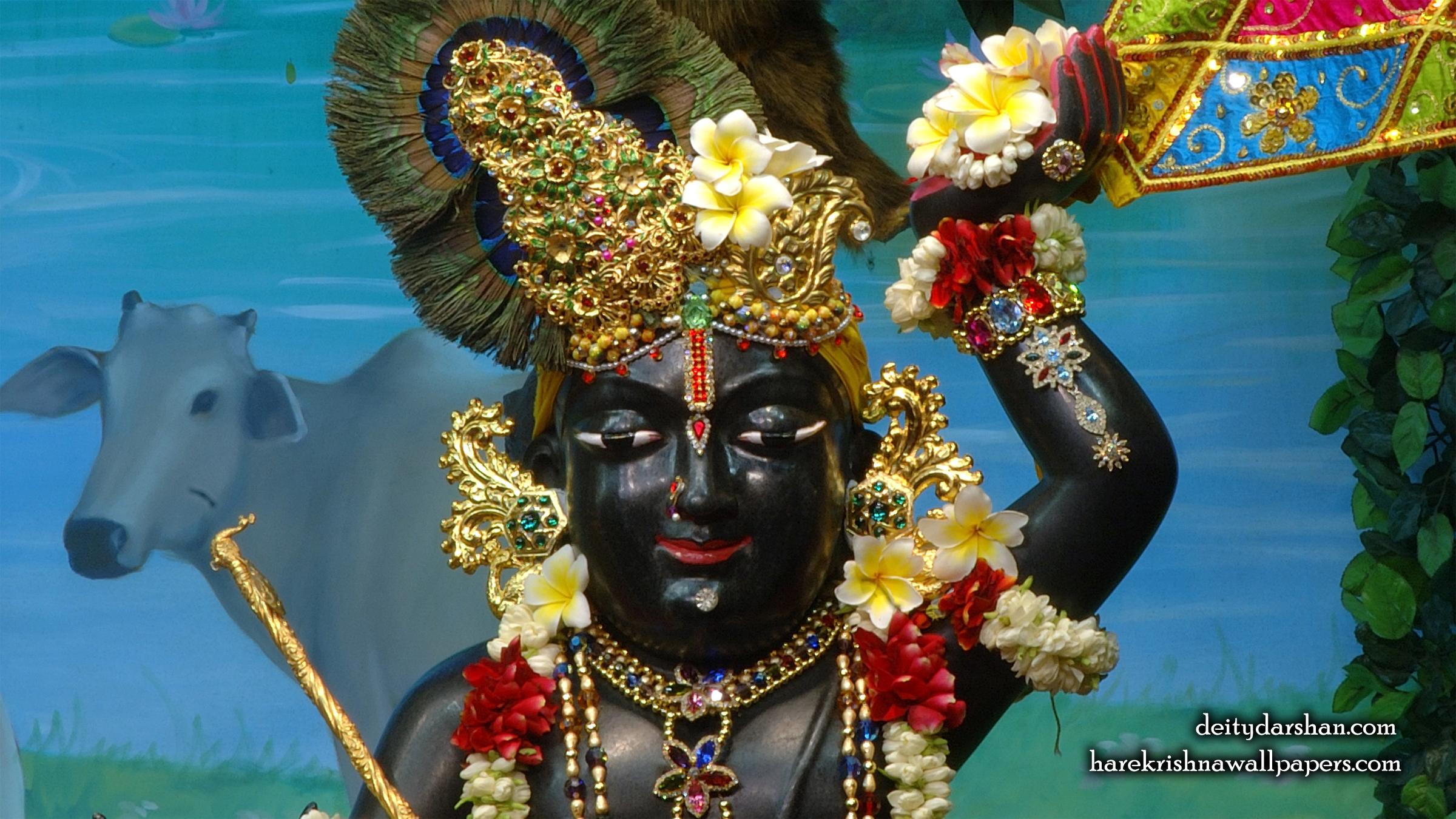 Sri Gopal Close up Wallpaper (056) Size 2400x1350 Download
