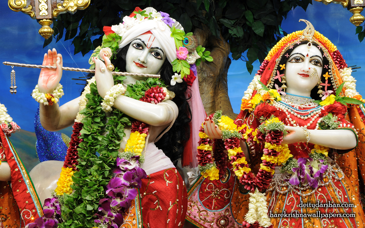 Sri Sri Radha Gopinath Close up Wallpaper (056) Size 1280x800 Download