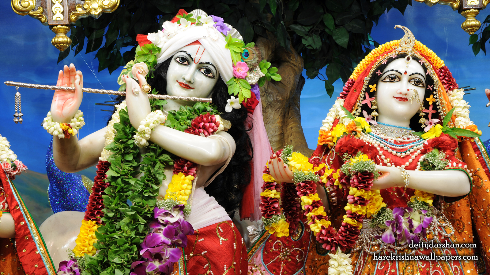 Sri Sri Radha Gopinath Close up Wallpaper (056) Size 1600x900 Download