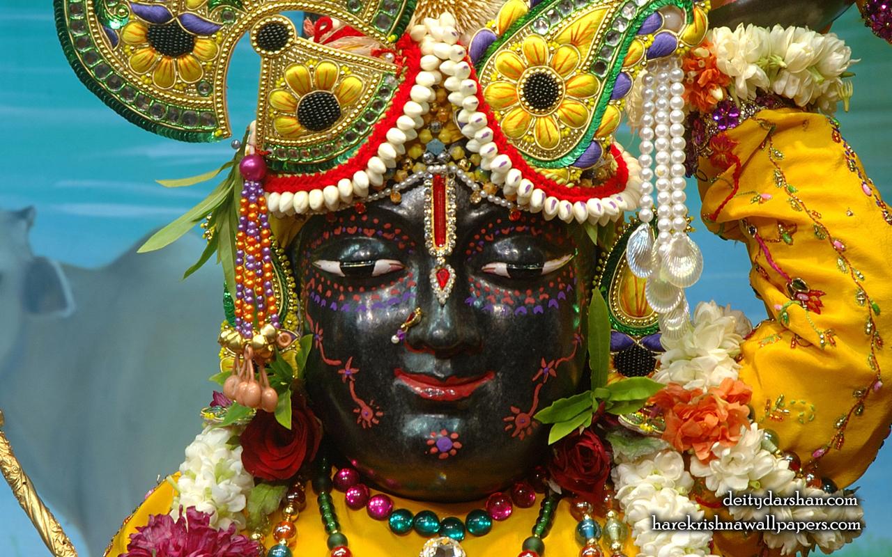 Sri Gopal Close up Wallpaper (057) Size 1280x800 Download