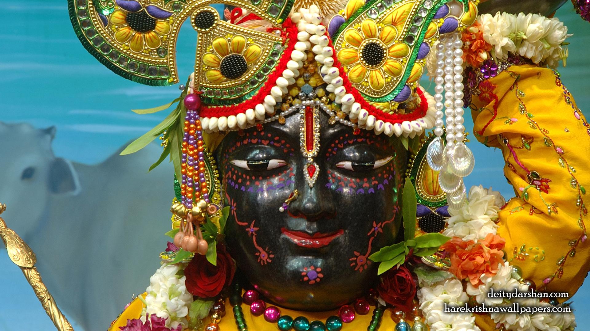 Sri Gopal Close up Wallpaper (057) Size 1920x1080 Download
