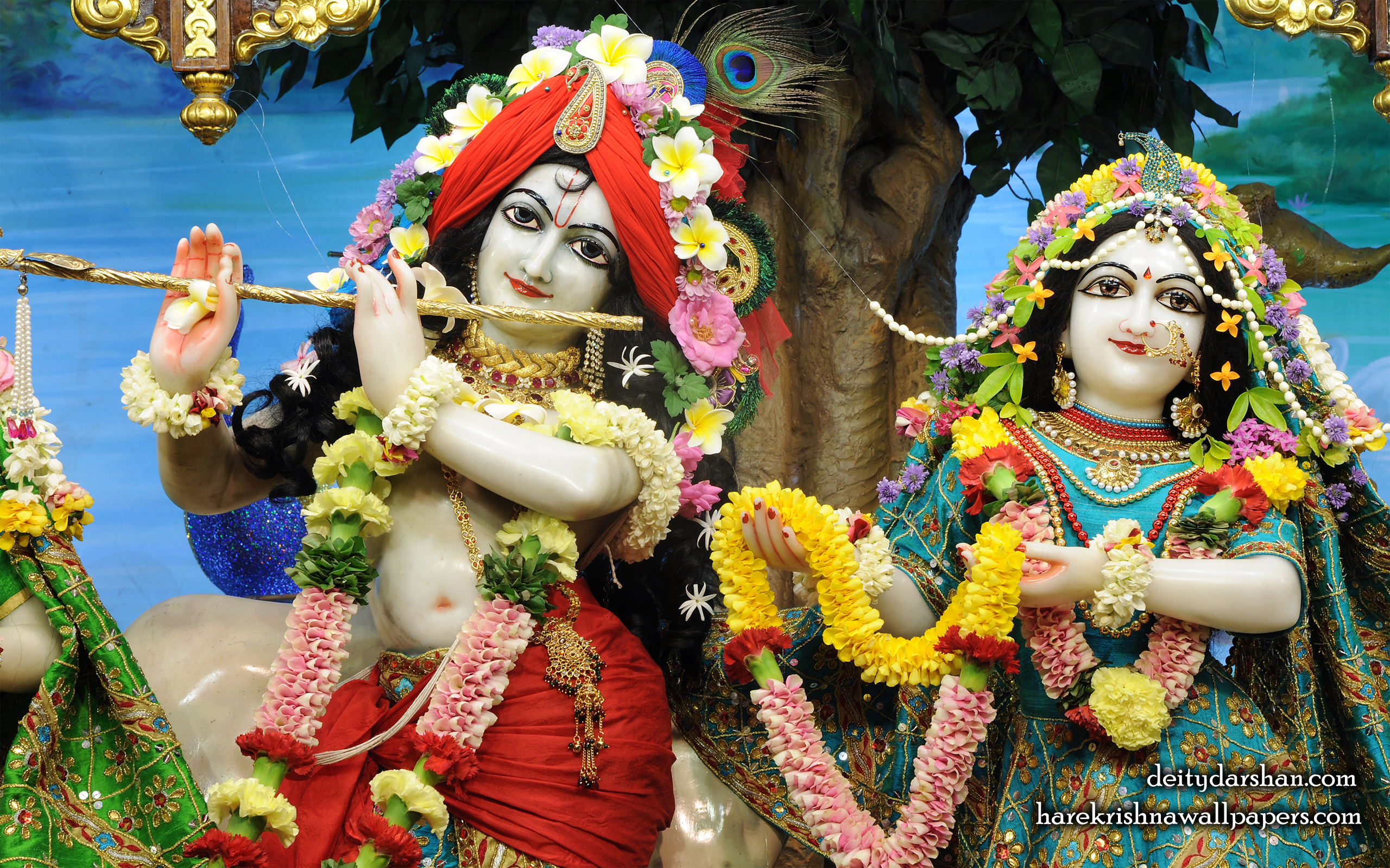 Sri Sri Radha Gopinath Close up Wallpaper (057) Size 2560x1600 Download