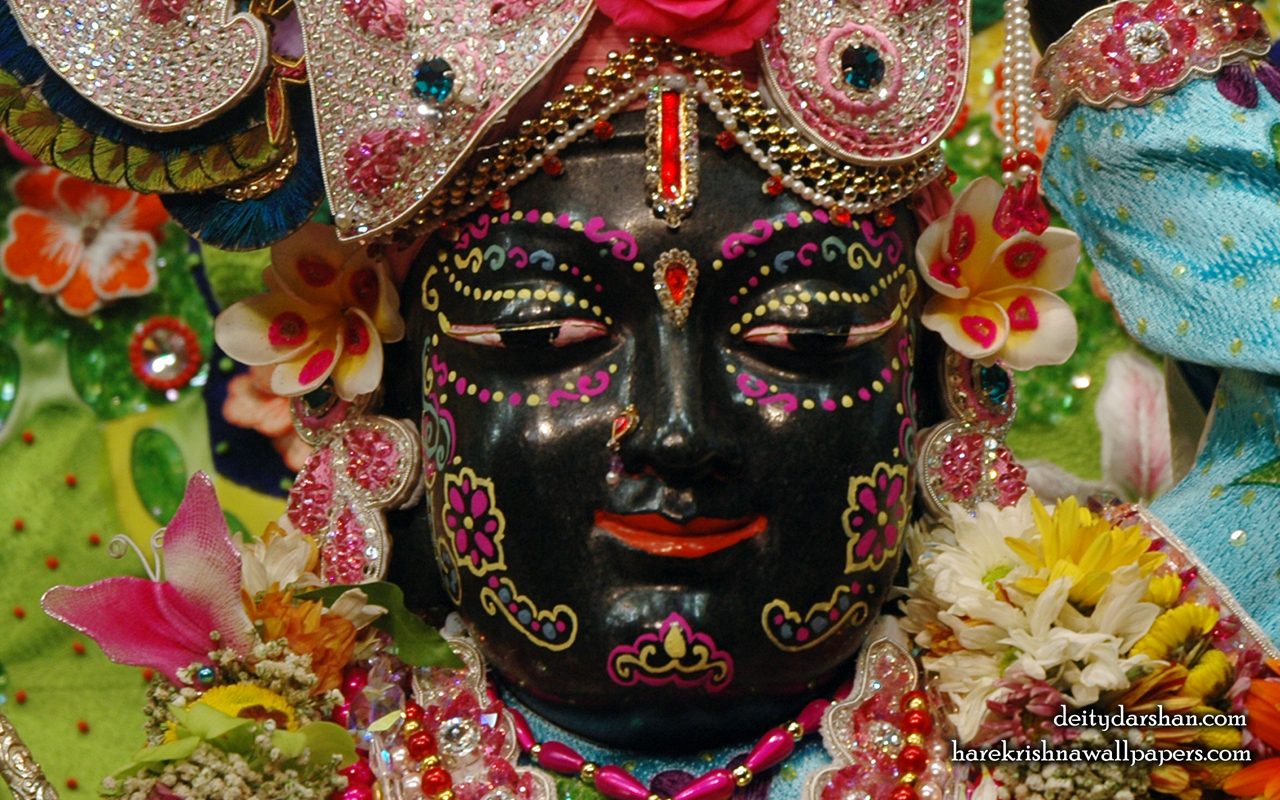Sri Gopal Close up Wallpaper (058) Size 1280x800 Download