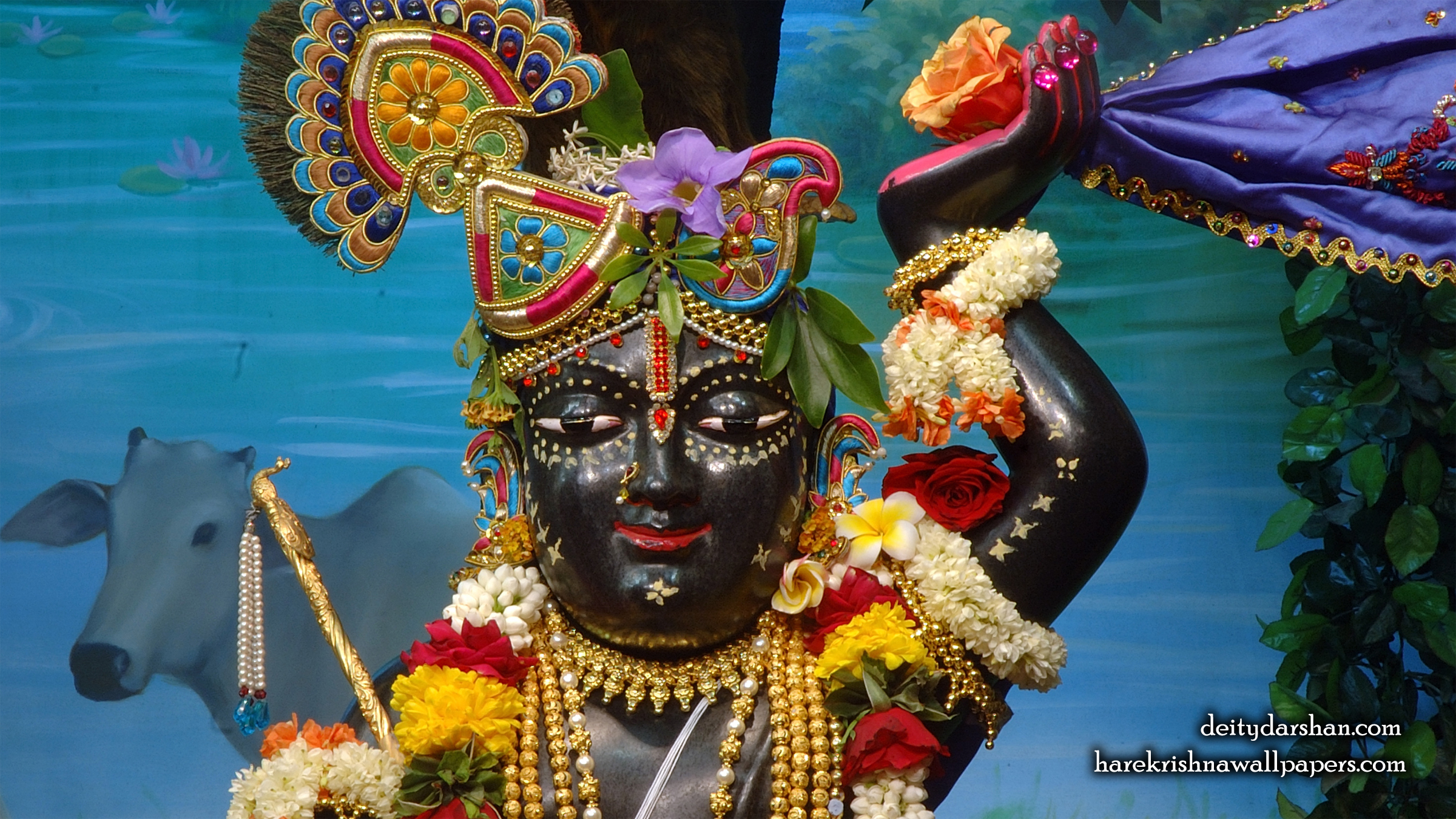 Sri Gopal Close up Wallpaper (059) Size 2400x1350 Download