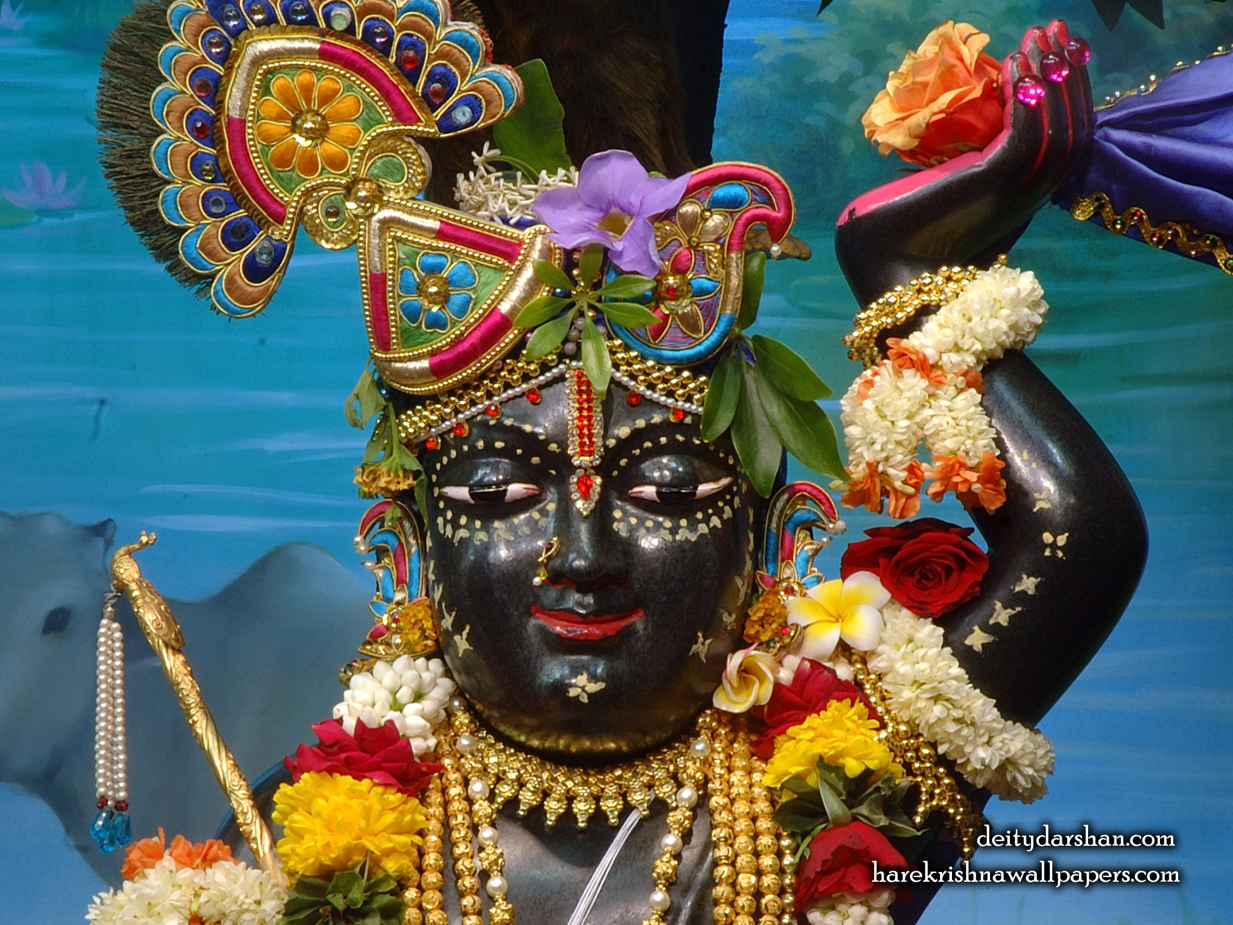 Sri Gopal Close up Wallpaper (059) Size 2400x1800 Download