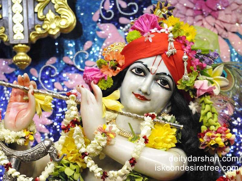 Sri Gopinath Close up Wallpaper  (059)