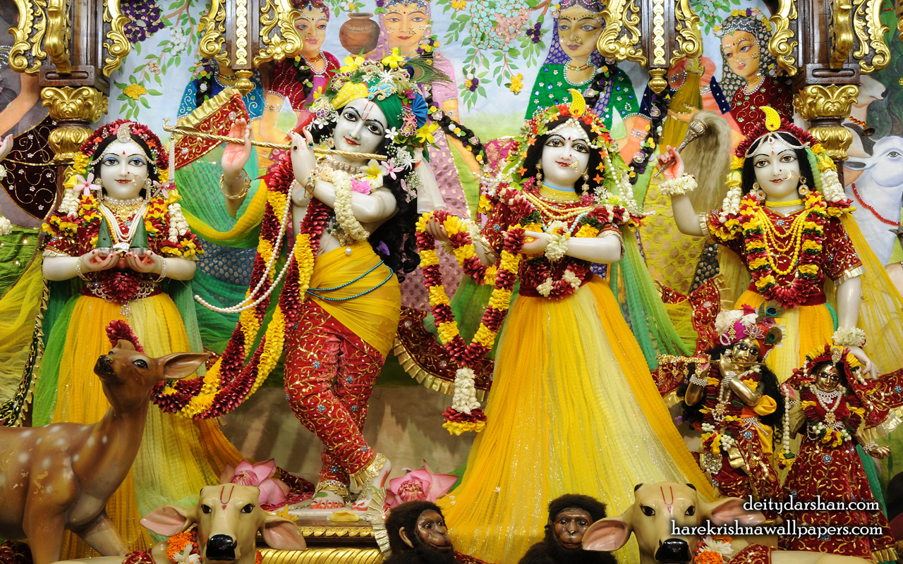 Sri Sri Radha Gopinath Lalita Vishakha Wallpaper (059) Size 1280x800 Download