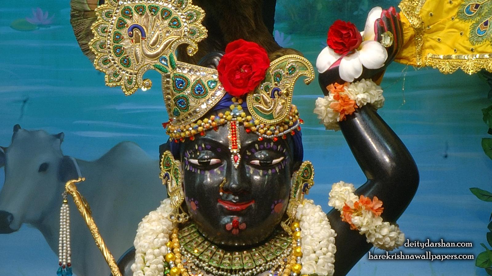 Sri Gopal Close up Wallpaper (060) Size 1600x900 Download
