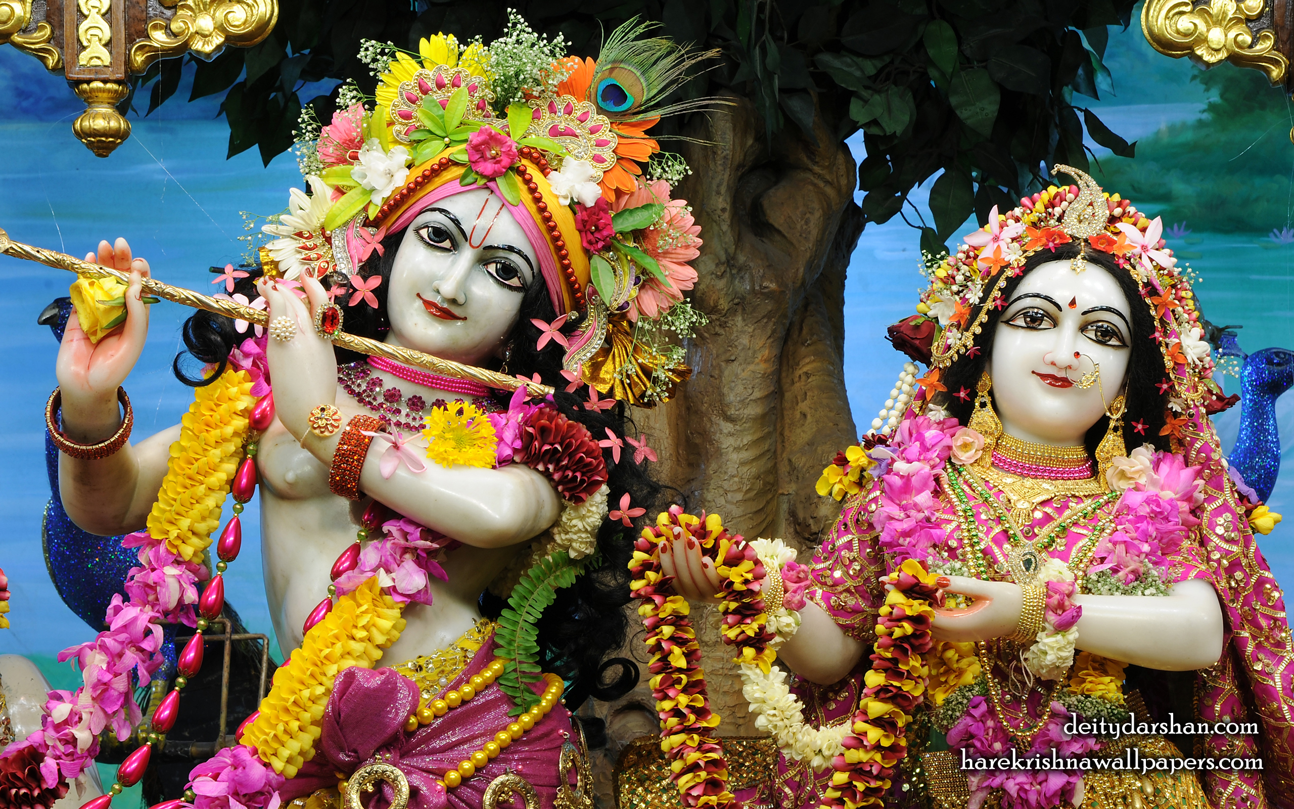 Sri Sri Radha Gopinath Close up Wallpaper (060) Size 2560x1600 Download