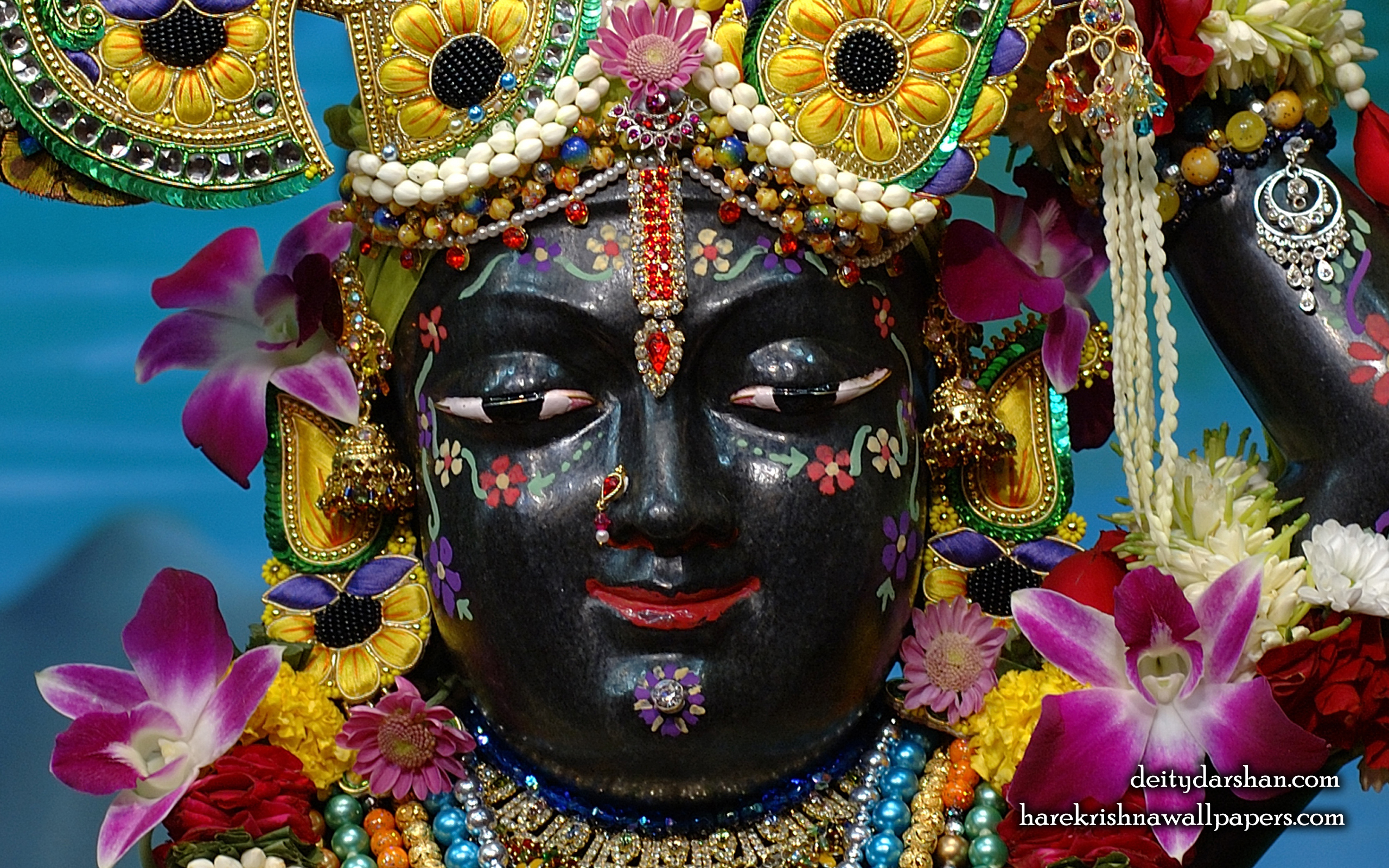 Sri Gopal Close up Wallpaper (061) Size 2560x1600 Download