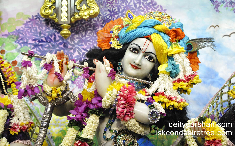 Sri Gopinath Close up Wallpaper (061) Size 1440x900 Download