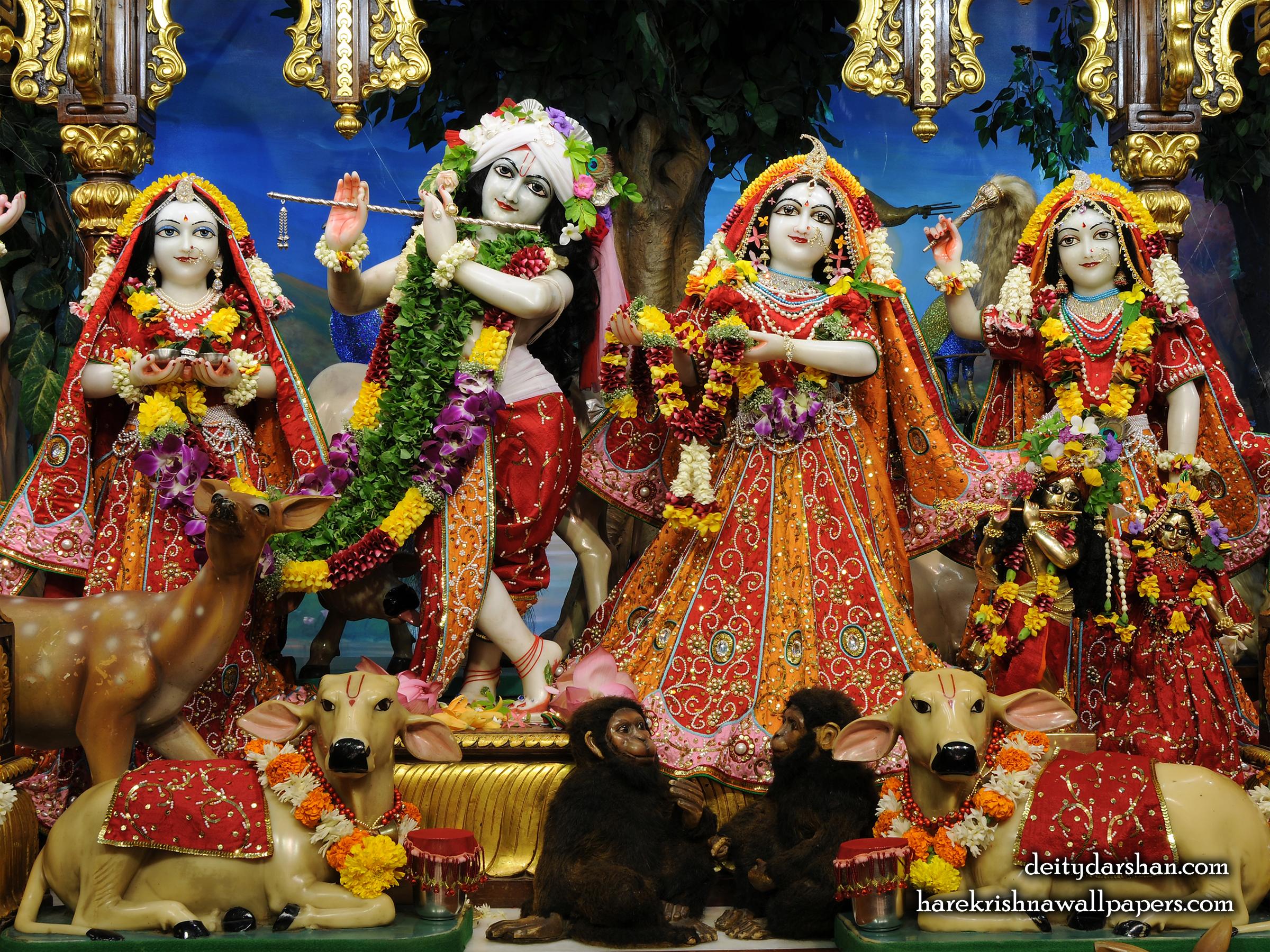 Sri Sri Radha Gopinath Lalita Vishakha Wallpaper (061) Size 2400x1800 Download