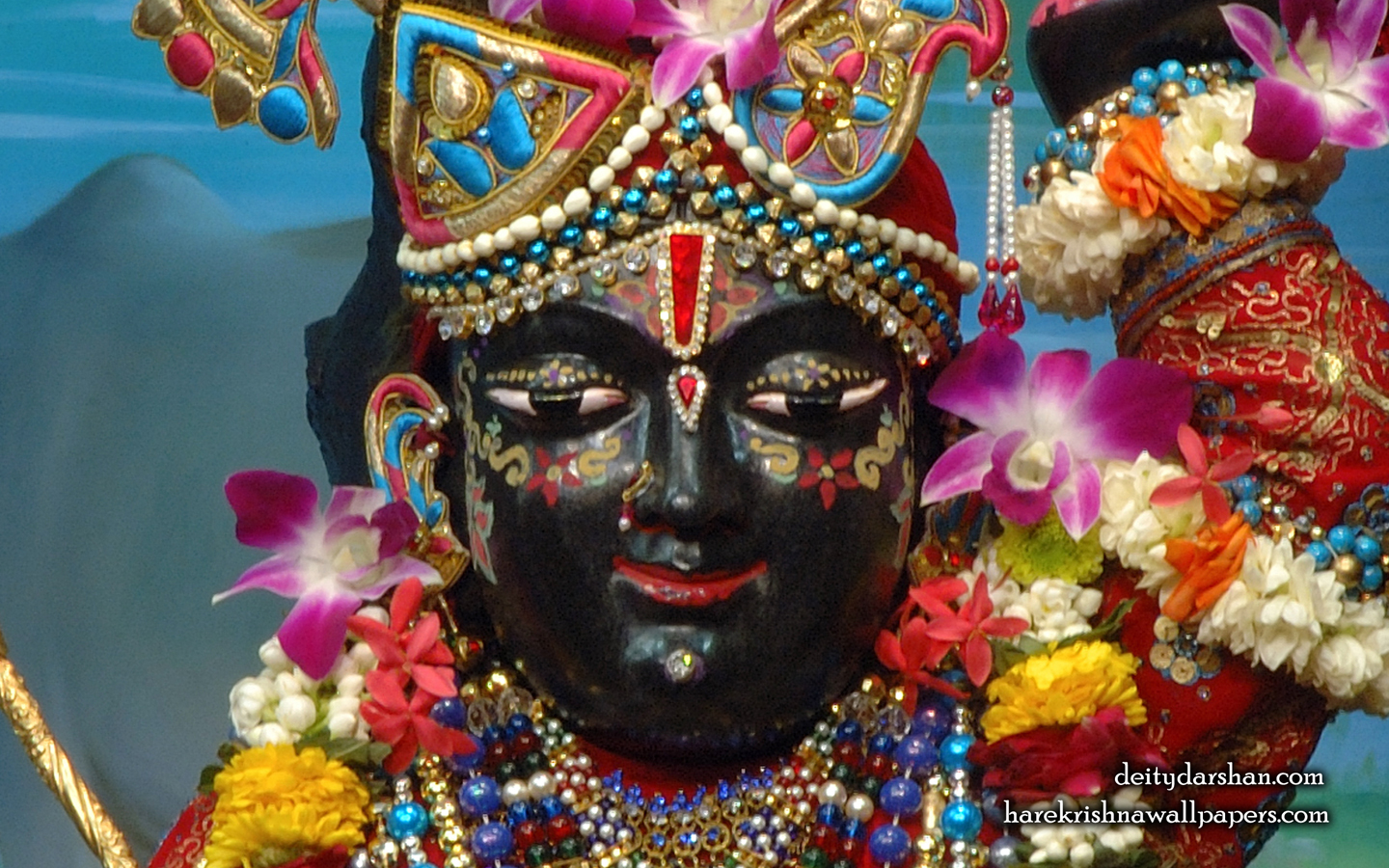 Sri Gopal Close up Wallpaper (062) Size 1440x900 Download