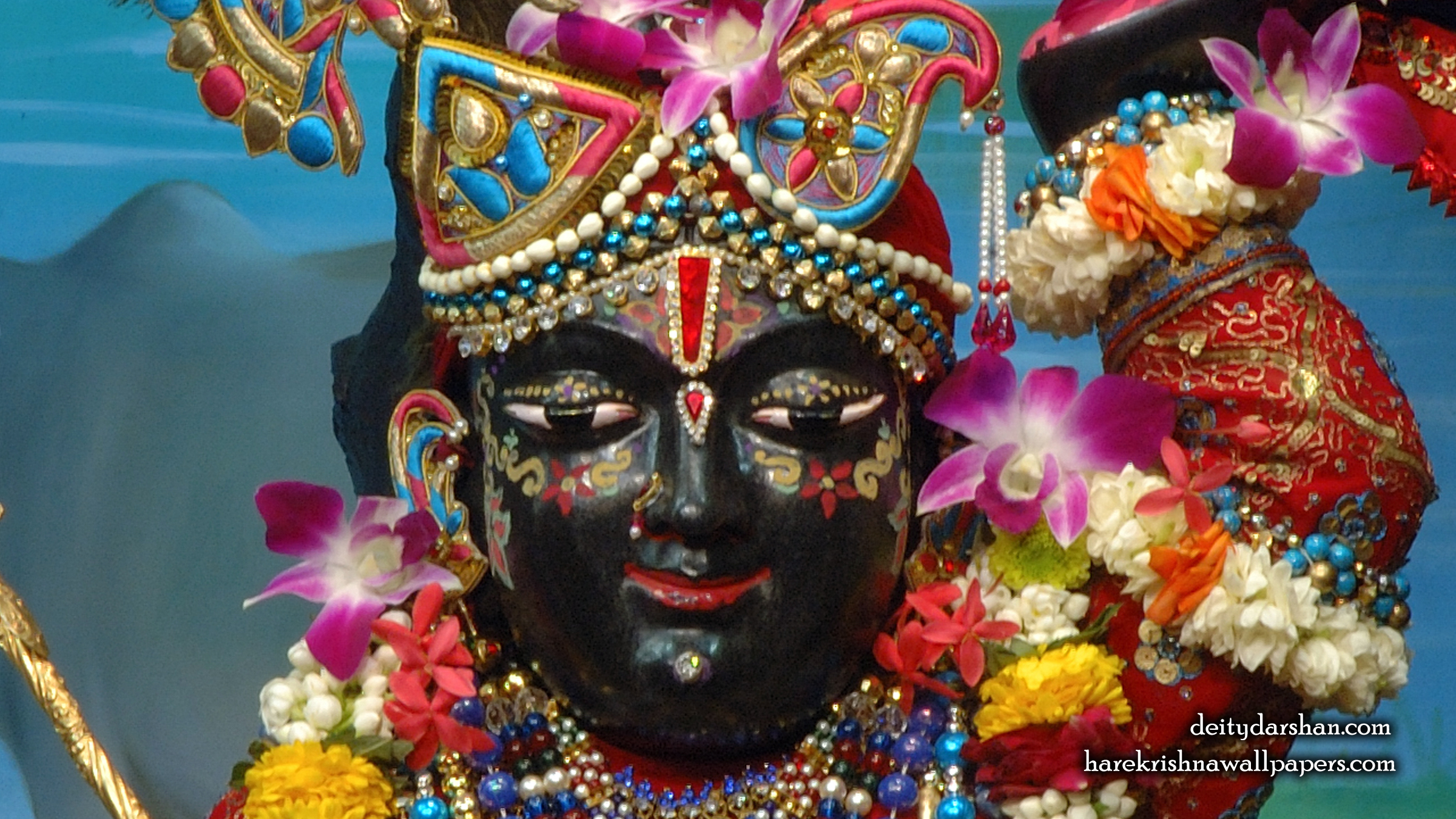 Sri Gopal Close up Wallpaper (062) Size 2400x1350 Download