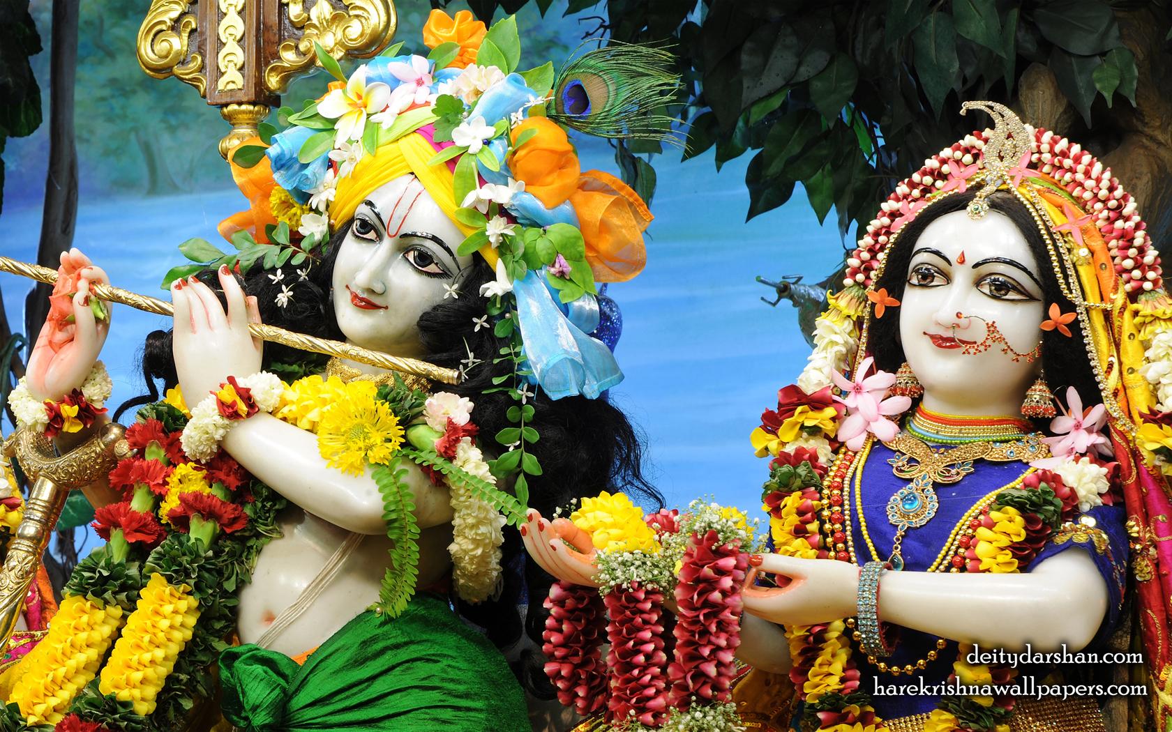 Sri Sri Radha Gopinath Close up Wallpaper (062) Size 1680x1050 Download