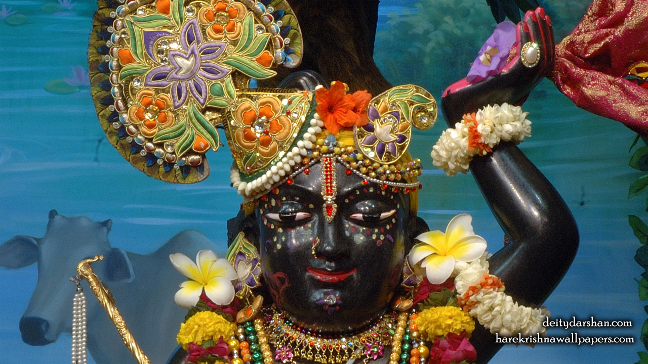 Sri Gopal Close up Wallpaper (063) Size1280x720 Download