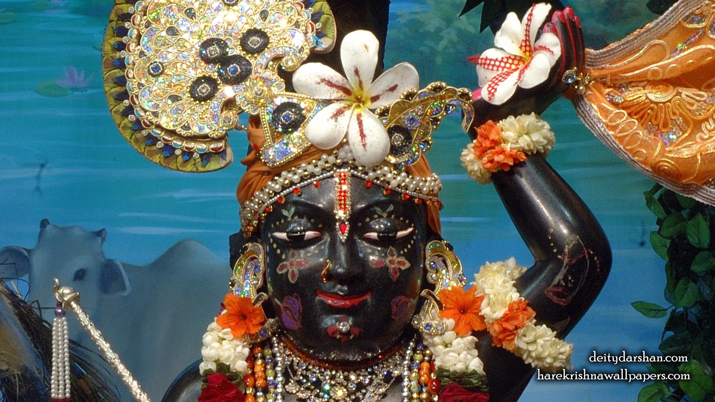 Sri Gopal Close up Wallpaper (064) Size 2400x1350 Download