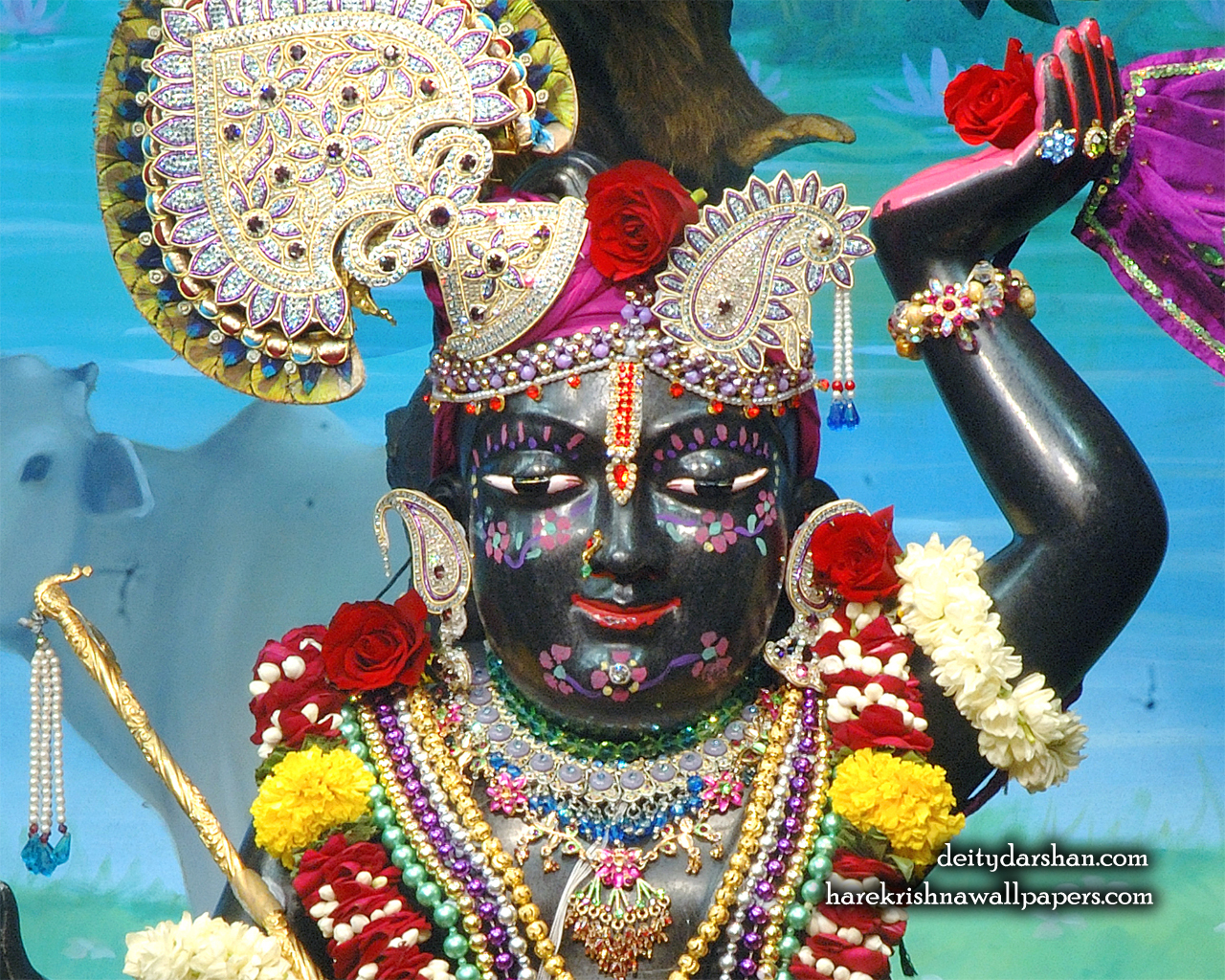 Sri Gopal Close up Wallpaper (065) Size 1280x1024 Download