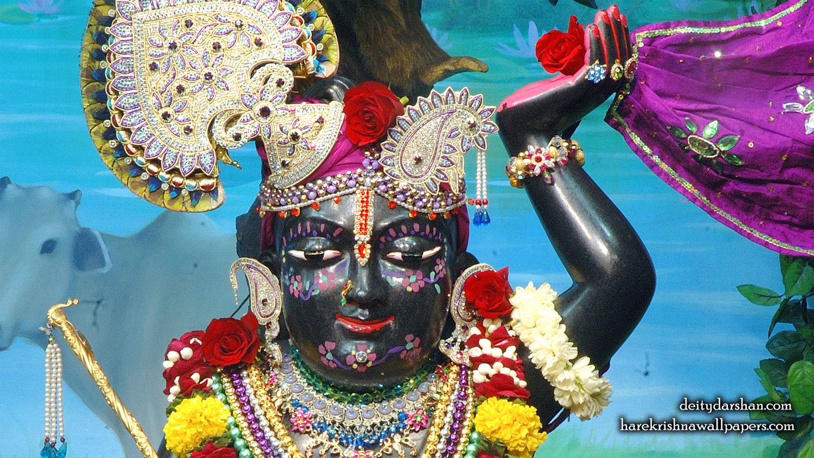 Sri Gopal Close up Wallpaper (065) Size 1600x900 Download
